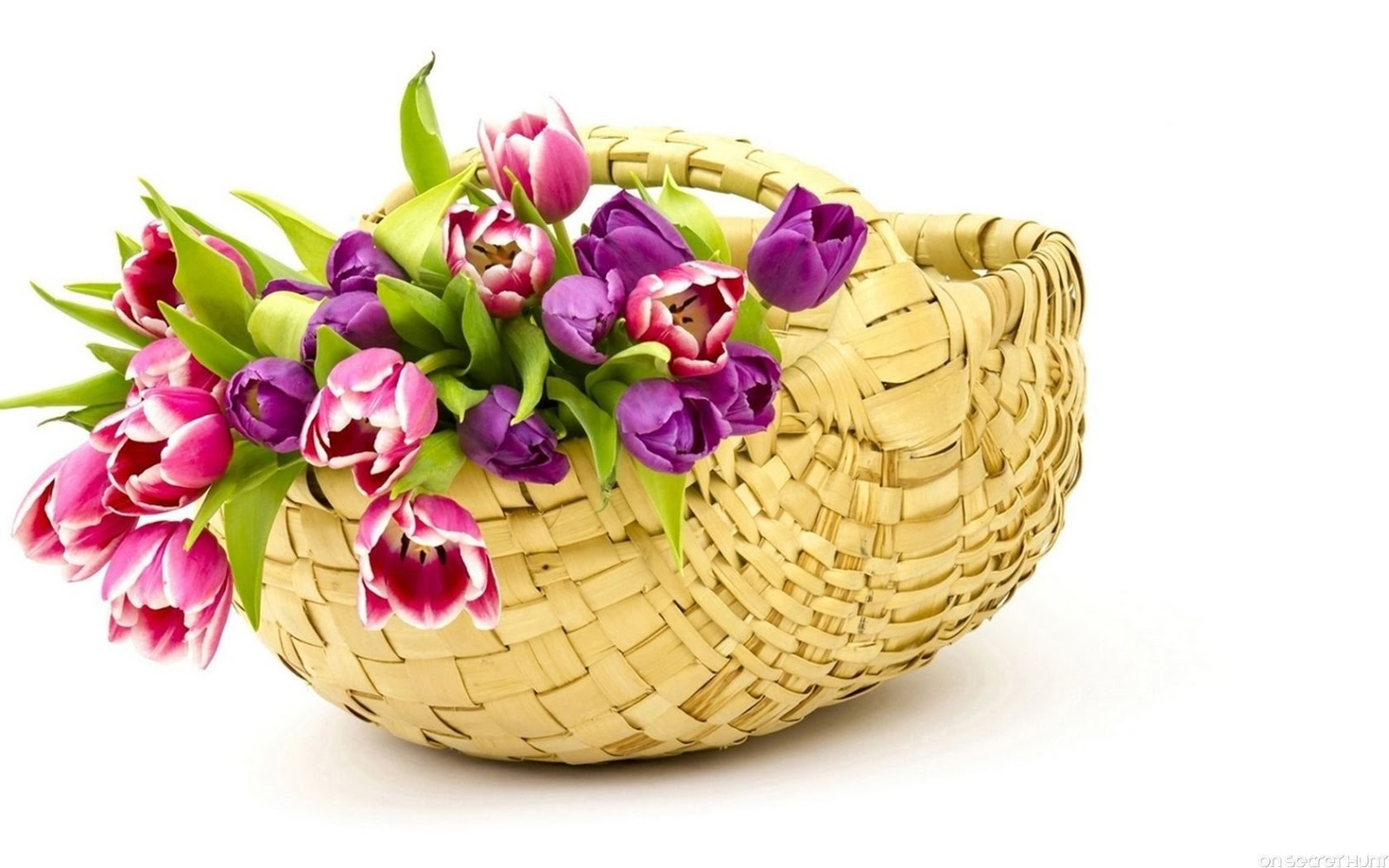 Beautiful flowers basket images flower wallpaper hd shayari urdu imagesurdu shayari with pictureurdu shayari wallpaper beautiful flowers basket hd image 2016beautiful flowers basket izmirmasajfo