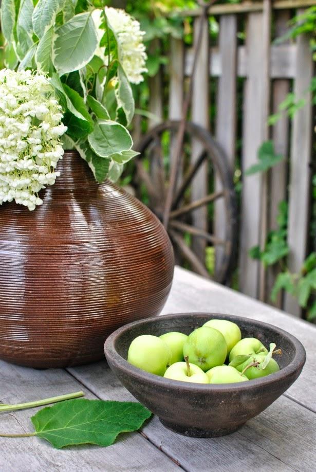 hannashantverk brun vas skål äppelkart