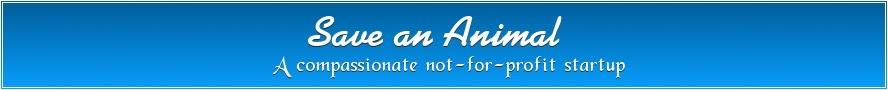 Save-an-Animal, Inc.