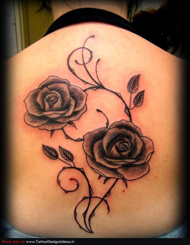 rose flower tattoos flower hd wallpapers images