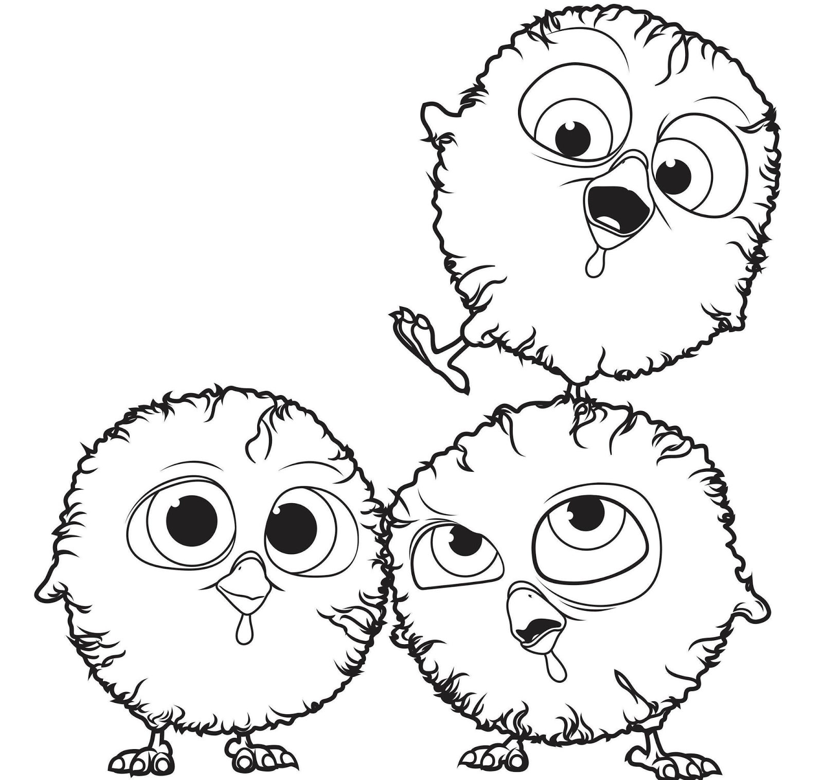 Free Birds Coloring Drawing Free wallpaper