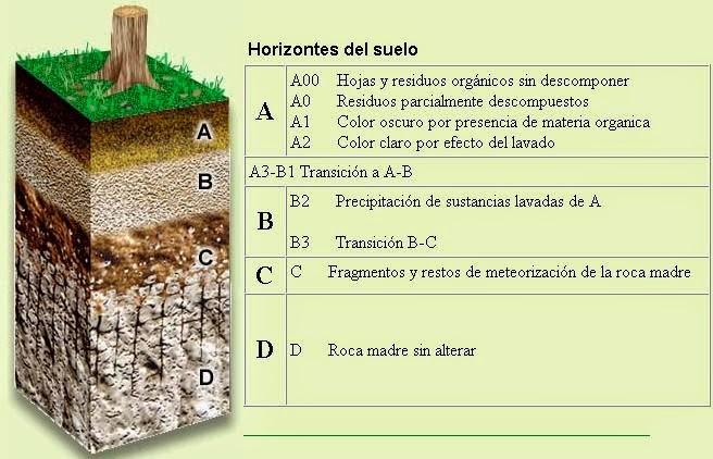 Conociendo el medio el relieve for El suelo y sus capas
