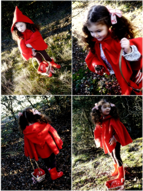 A Little Red Riding Hood Woodland Inspired Birthday Party and Printables