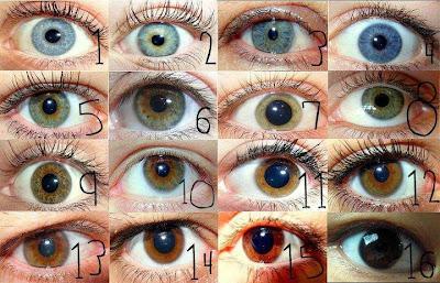 اكتب رقم اقرب لون لعينك من الصورة ؟
