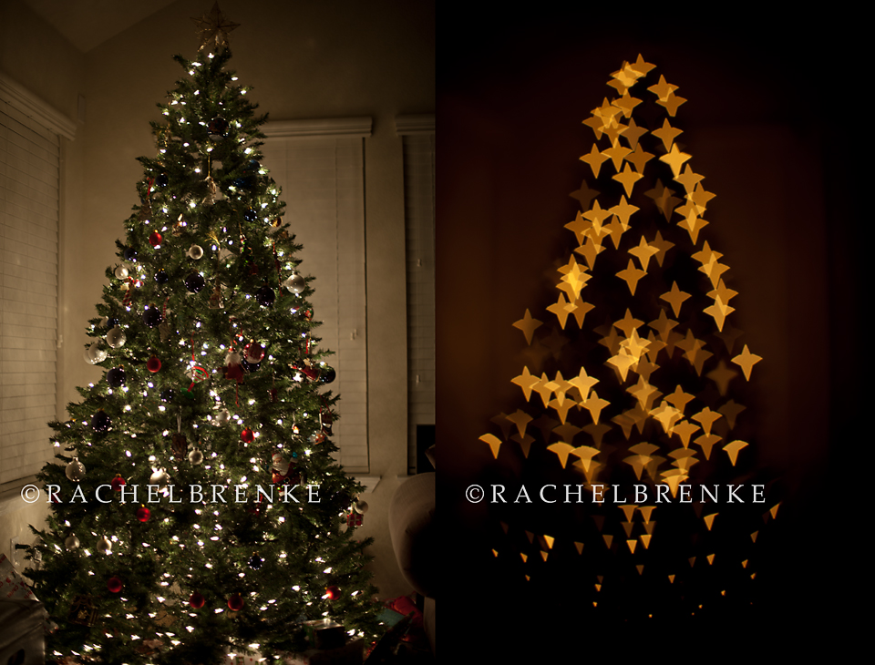 How To Shoot Shaped Christmas Tree Bokeh The Law Tog - Christmas Tree Shaped Lights