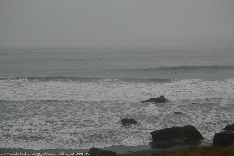 road trip cold foggy mornings early poor visibility beach oregon coastline redwood forests