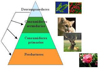 La vida en nuestro entorno♥: mayo 2012