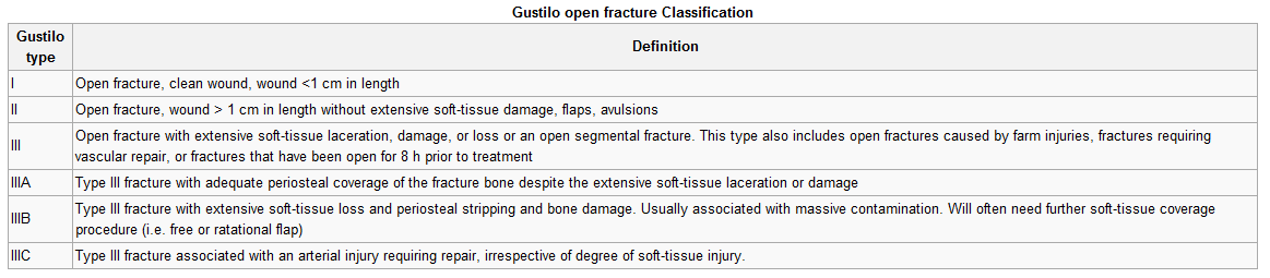 Open Fracture Classification-1.bp.blogspot.com