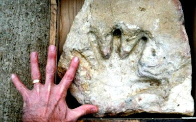 A Fossilized Human Hand Print: Out-of-place Artifacts (OOPArt)