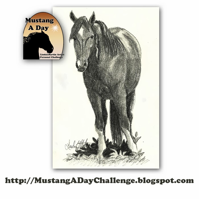wild horse christian personals Christian dream interpretation day horse dream meaning and interpretations 88 wild horses – if you dream about a wild horse it may indicate that you have.