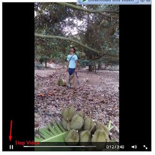 _2_Stop Video Facebook