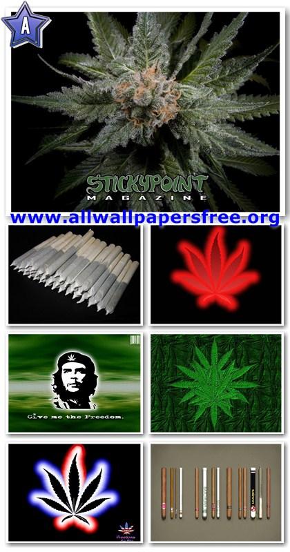 130 Marijuana (Cannabis) Wallpapers 1024 X 768