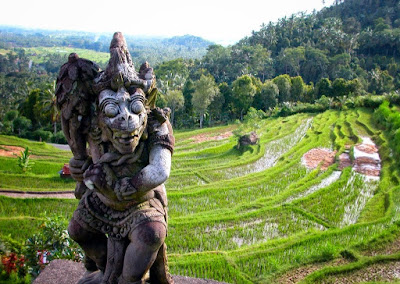 green holiday in Bali, Metekap, Bali rice fields, terraced rice fields of Bali, holiday in Bali, travel to Bali, rice field tour in Bali