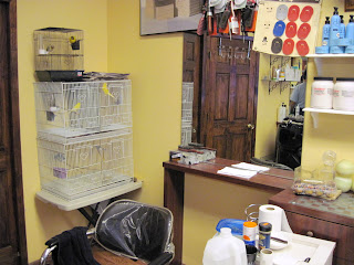 Jean Romano Barber Shop New York City Bird Cages