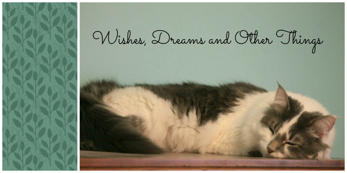 Wishes, Dreams & Other Things