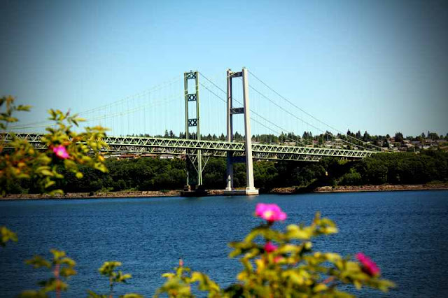 pm roolls tacoma narrows bridge Tacoma narrows bridge a lot of things can go wrong when building or designing a major building, plane, bridge, or even a roadengineers face the challenges to overcome these flaws or problems everyday when they are trying to design structures.