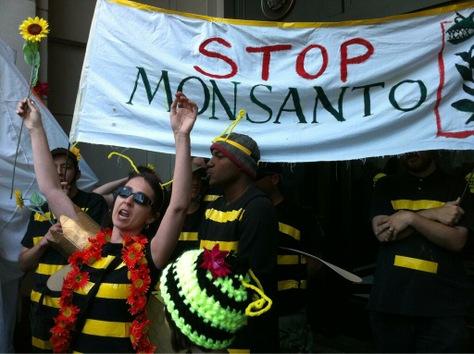 Marchas contra Monsanto por todo el mundo el 25 de Mayo 2013 Monsanto+EEUU
