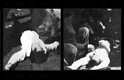 Οι νεκροί του Πολυτεχνείου. Άγνωστες ιστορίες των νεκρών και τραυματιών της εξέγερσης [Βίντεο]