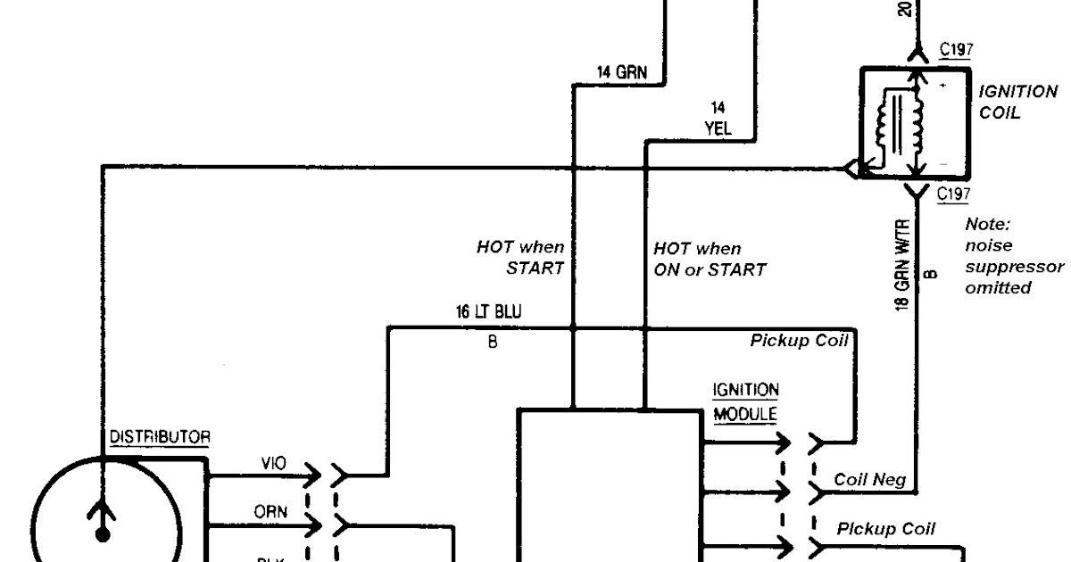 Diagram  Troubled Child Gm Tbi Ignition Wiring Wiring Diagram Full Version Hd Quality Wiring
