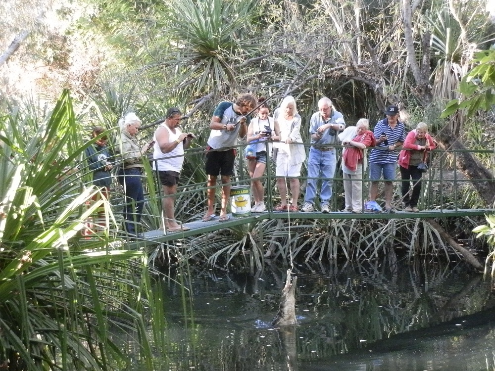 Red S Australia 7 Crocodile Hot Spots In Australia S Top End