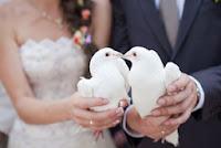 Porumbeii albi de nunta - simbolul iubirii, al credintei si pacii