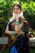 Sheena Shahabadi Latest Photos in saree-thumbnail-9