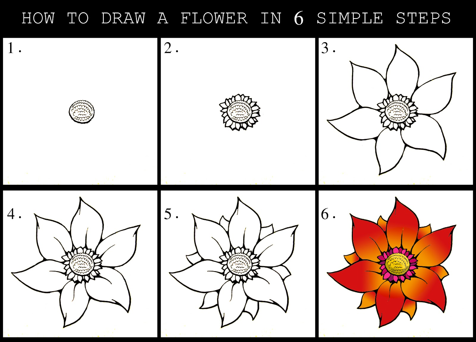 how to draw flowers step by step with pictures beautiful