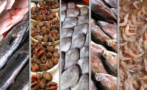 Tips memilih ikan dan bahan makanan laut segar