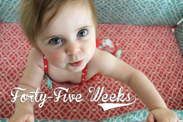 http://meetthegs.blogspot.com/2014/05/lilly-anne-45-weeks.html