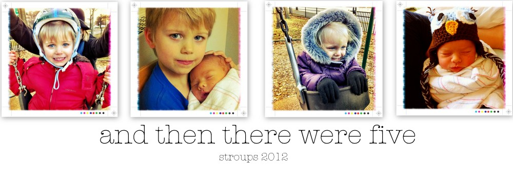 The Stroups