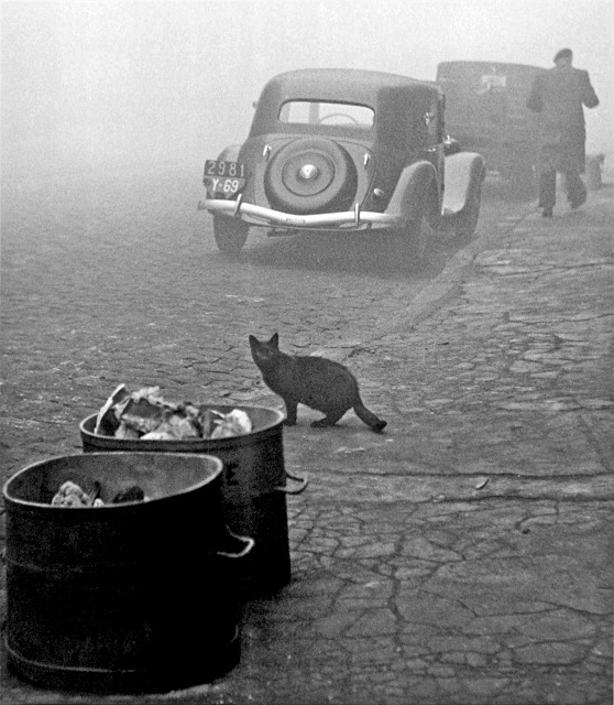 40 Amazing Historical Pictures - Paris. 1950.