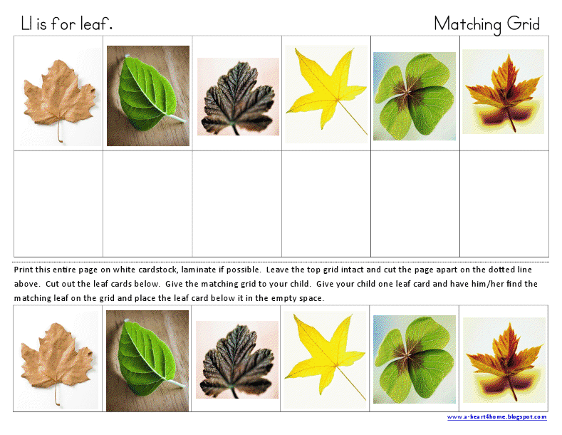 A Heart For Home: Free Printables: Ll is for Leaf Tot u0026 Preschool Set