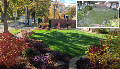 The visible impact Integrity can have on your lawn.