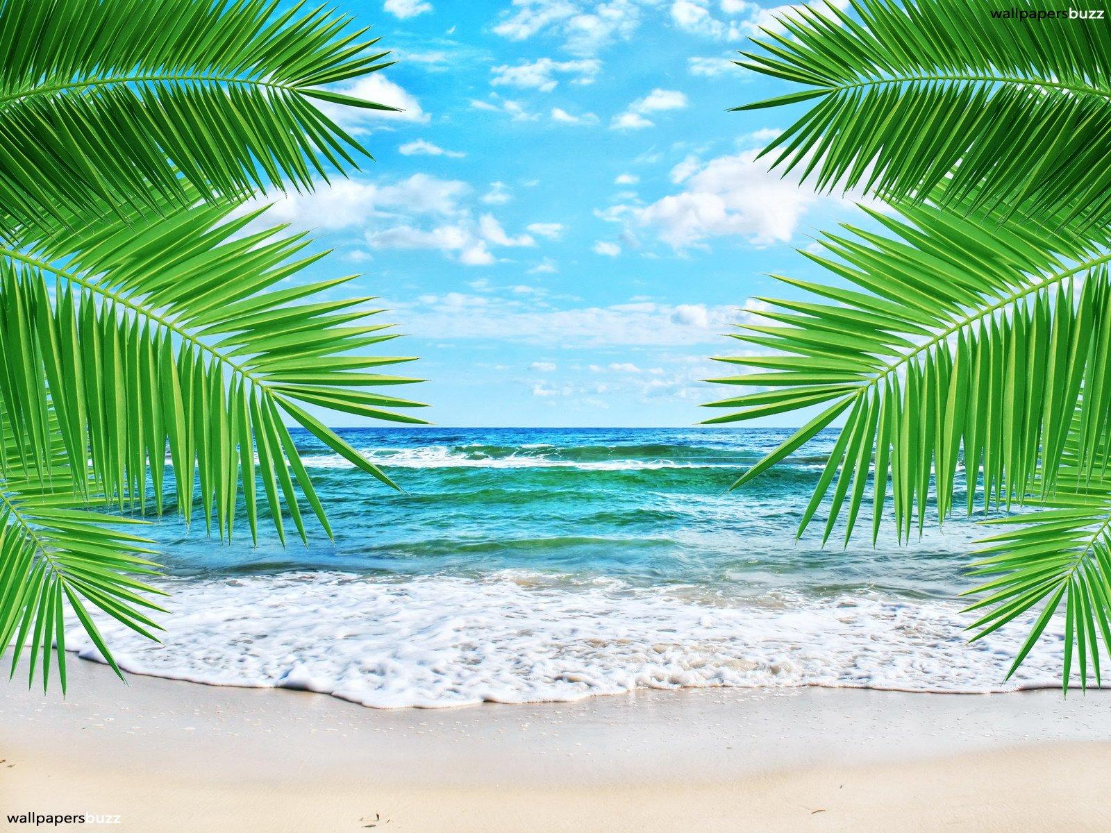 http://1.bp.blogspot.com/-LqOPKolSXpw/UHZ8gS3-PdI/AAAAAAAAIk8/WEw-jL22t10/s1600/beach-wallpaper-hd-33.jpg