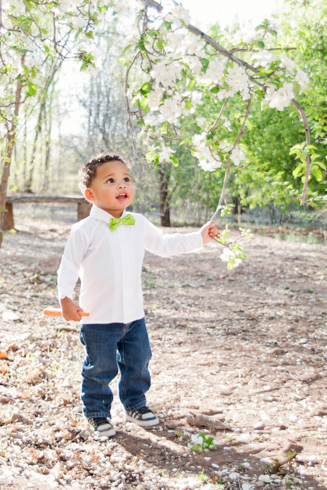 New mexico children photography, albuquerque children photography, albuquerque kids photographer, easter photoshoot ideas, easter photography session, kids easter outfits, albuquerque easter photos