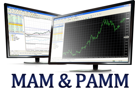 Forex pamm software