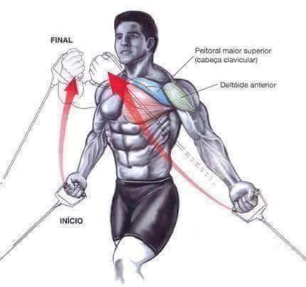 Bodybuilding weight training Exercises 3