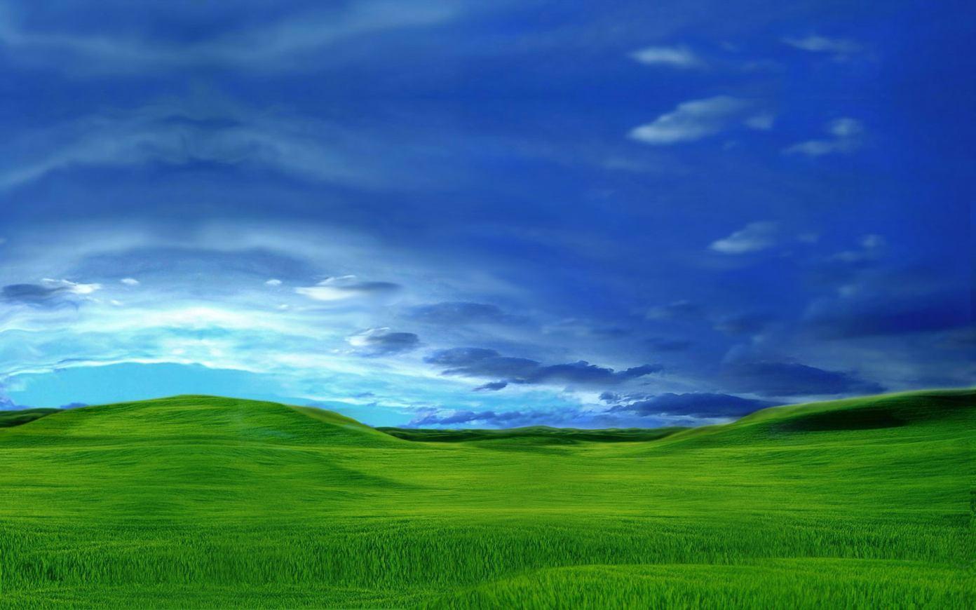 Gambar Ilalang dan Padang Rumput yang Indah