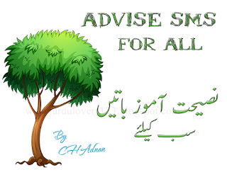 Advice Sms Messages, cute Facebook Status, love advice sms messages, Awesome collection of advice SMS in Urdu, Hindi and English languages,  advice, advice quotations sms, advice sms collection, funny advice sms, good advice sms, latest advice sms messages Hindi urdu and English,