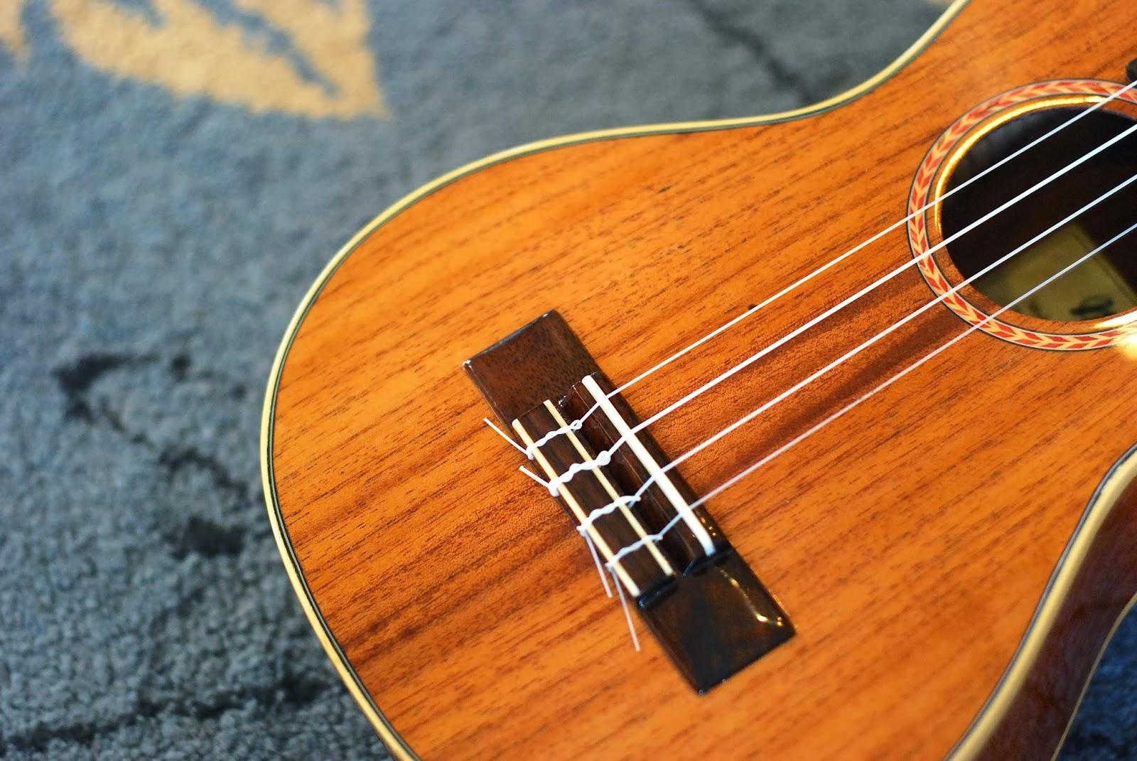 Noah mahogany concert ukulele bridge