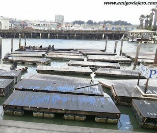 Pier39, San Francisco, www.amigoviajero.com