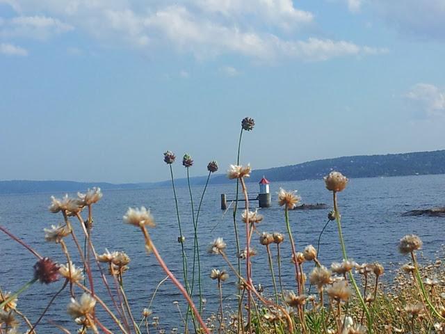 Elisa Frittoli @elisifoflife.blogspot.com