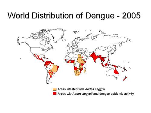 Mensch Krankheiten Weltatlas Seite 3