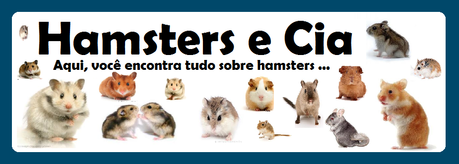 Blog Hamsters e Cia