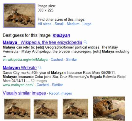 http://1.bp.blogspot.com/-Ls68y9kUuAI/TfqCem3GS9I/AAAAAAAAACo/QumKEaPLTu8/s1600/search-animals.jpg