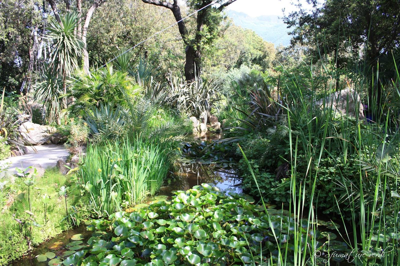 giardini la mortella sfumature verdi
