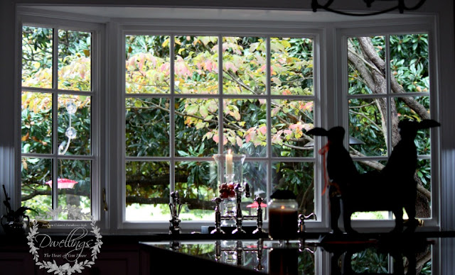Kitchen views of the dogwood leaves turning fall colors.