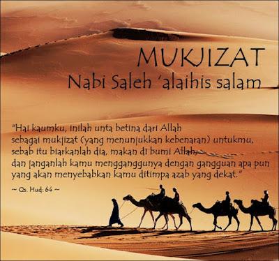 http://sunnahsunni.blogspot.com/2014/12/kisah-nabi-shaleh-alaihisalam.html