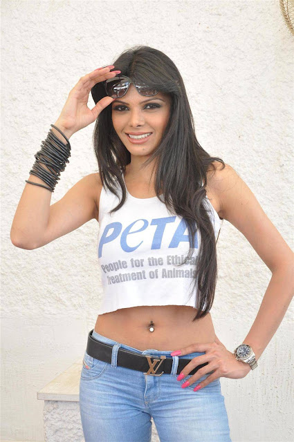 Bollywood Actress Sherlyn Chopra Navel Show Photos
