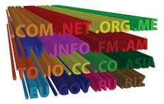 Pengertian Domain dan Contohnya